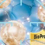 BioProtect – chroń ściany przed skażeniem biologicznym