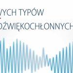 PRESS GLASS rozszerza ofertę dźwiękochłonnych szyb zespolonych