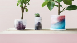 """""""Plants-skin"""", czyli skóra dla roślin Przemysł, BIZNES - Jak działa? Wykonana jest ze specjalnego materiału i atramentu, który zmienia kolory dając sygnał, kiedy roślina wymaga podlania."""