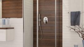 Nowość od SANPLAST SA – kabina PKDJ/TX5b BIZNES, Gospodarka - W przypadku przestronnych salonów kąpielowych nie ma większego znaczenia, czy kabina będzie kwadratowa, prostokątna, czy okrągła.