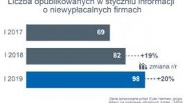 W styczniu liczba niewypłacalności polskich firm wciąż rosła BIZNES, Gospodarka - Euler Hermes, wiodący globalny ubezpieczyciel należności handlowych, zbadał sytuację firm w Polsce pod względem niewypłacalności.