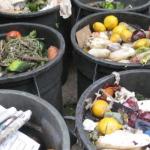 Czy można ograniczyć marnowanie żywności?